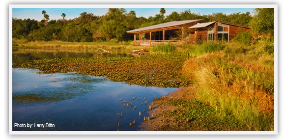 View of lake, woodlands, and building at Estero Llano Grande State Park.